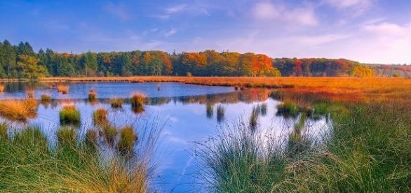 Water conservation/Photo via tpsdave, pixabay