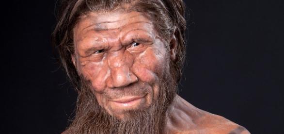 Ricostruzione 3d del volto di un Uomo di Neanderthal