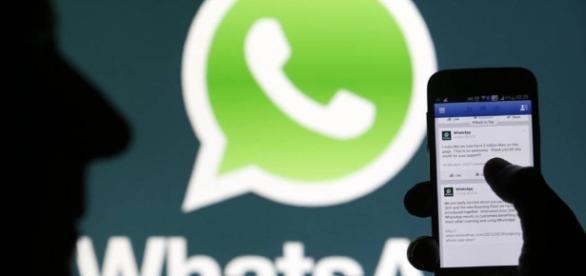 WhatsApp | NTR Zacatecas .com - ntrzacatecas.com