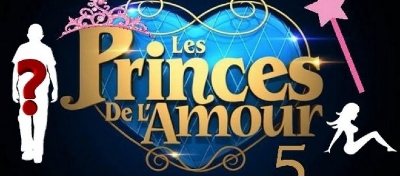 qui-fera-partie-de-la-nouvelle-saison-des-princes-de-lamour_1265231.jpg (1433×630)