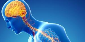 Nuove speranze contro Parkinson dalla Svezia
