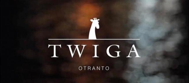 Briatore: 'lavori in regola! Tutti potranno permettersi un aperitivo al Twiga!'