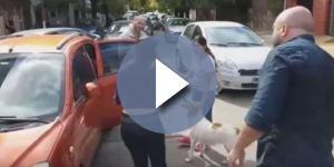 Na imagem a mulher segurando o cão enquanto pessoas revoltadas discutem com ela