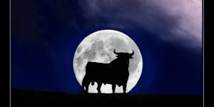 Oroscopo | previsioni astrali di domani, mercoledì 26 aprile - Luna in Toro - gran mercoledì solo per tre segni
