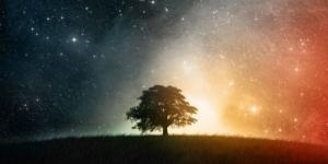 Oroscopo | previsioni del giorno 27 di aprile 2017 - le stelle per gli ultimi sei segni zodiacali da Bilancia fino a Pesci
