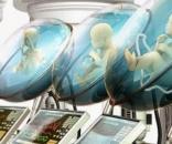 Creato grembo artificiale per i nati prematuri