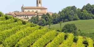 Oltrepo' Pavese, terra di Pinot Nero DOC