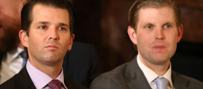 Trump brothers to expand the family business in the United States
