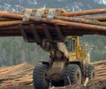 Kady's Watchlist for Oct. 17 – Softwood lumber tops House agenda / Photo by ottawacitizen.com via Blasting News library
