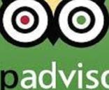 Report, le false recensioni su TripAdvisor e i segreti delle food blogger