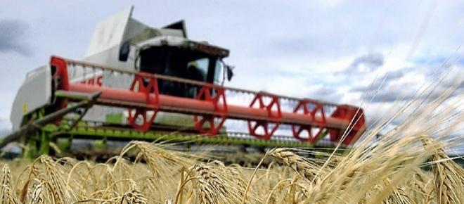 Russland-Sanktionen - russische Landwirtschaft hat enorm davon profitiert
