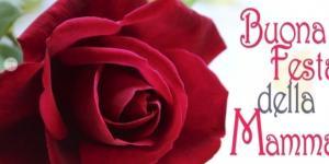Festa della mamma 14 maggio 2017
