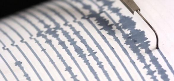 sismografo - Siena News - sienanews.it