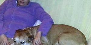 La justicia deniega a Teresa Romero, superviviente del ébola, la ... - lavozdeasturias.es
