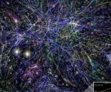 Darknet, la rete oscura del web, ora è stata mappata