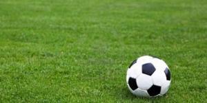 Campi da calcio, il Tar di Bologna respinge la richiesta di ... - lanuovarimini.it