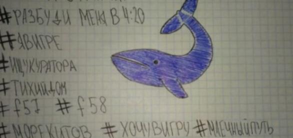 """El juego de la ballena azul"""": estos son los 50 retos del peligroso ... - publimetro.cl"""
