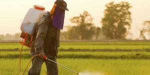 New Studies Reveal Damaging Effects of Glyphosate - mercola.com