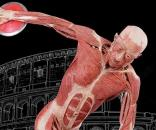 Mostra 'Real Bodies' a Roma fino al 2 luglio 2017