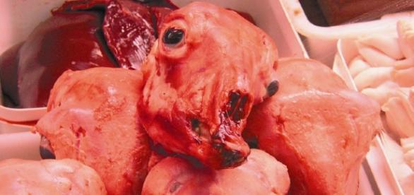 Agnelli uccisi per la tradizione di Pasqua