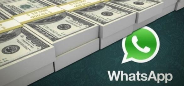 Nuovo aggiornamento in arrivo per WhatsApp.