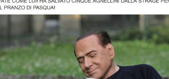 Berlusconi vegano e difensore degli animali: l'allattamento di un agnello