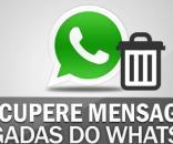Recuperar uma mensagem apagada do WhatsApp