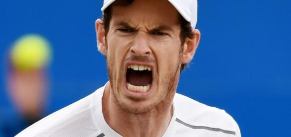 Tennis-Murray loses season opener to Goffin in Abu Dhabi   Zawya ... - zawya.com