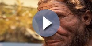 Representación del hombre de Neandertal