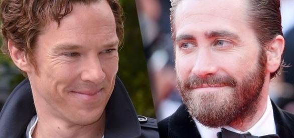 "Jake Gyllenhaal e Benedict Cumberbatch insieme per ""Rio"", di Luca ... - talkymovie.it"