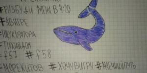 Blue Whale: il 'gioco' suicida