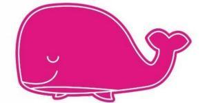 Ecco cosa fare se vediamo una balena rosa sul web - Jornada Online