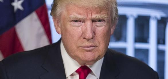 President Donald J. Trump's Official Portrait