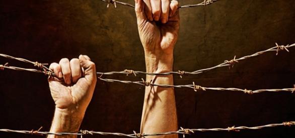 Tortura: ancora nessuna legge e il Senato continua a rimandare ... - ultimavoce.it