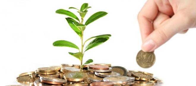 Agricoltura: incentivi, fondo perduto e sgravi fino a € 50mila per nuove aziende