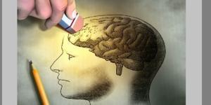 La galantamina, un alcaloide in commercio da oltre 15 anni, riesce a stabilizzare nel lungo periodo le condizioni dei pazienti affetti da Alzheimer.