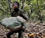 L'exploitation des enfants, victimes d'un marché juteux