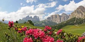 La montagna e la sua bellezza:il luogo ideale per divertirsi e rilassarsi al coltempo.