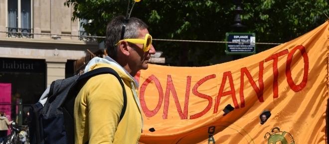 """""""Monsanto t'es foutu les abeilles sont dans la rue!"""""""