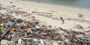 La spiaggia piena di detriti disseminati