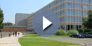 La Biblioteca Nazionale licenzia gli scontrinisti