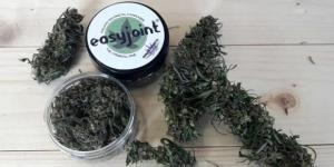 EasyJoint, la prima cannabis legale e acquistabile facilmente