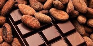 """Cacao: tra scienza e mito, le virtù del """"cibo degli dei"""" attraverso i secoli - lastampa.it"""