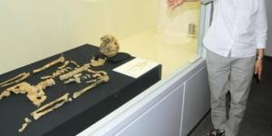 Imagen de los restos hallados el pasado 19 de mayo. | Fotografía perteneciente e a Kyodo News