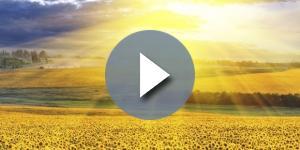 Oroscopo | previsioni del 29 maggio 2017 per Bilancia, Scorpione, Sagittario, Capricorno, Acquario e Pesci