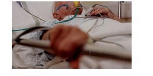 Idosa foi atacada no início de maio e morreu dias depois no hospital
