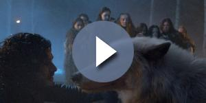 Game of Thrones - Is the real life Ghost dead? Screencap: valar morghulis via YouTube