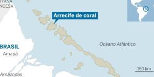 Corais da Amazônia: objetos de estudos científicos e econômicos