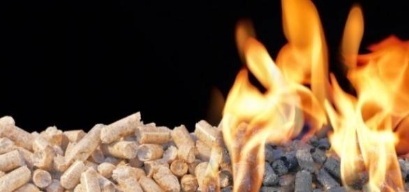 La biomasa es una energía renovable mucho menos contaminante que las energías fósiles