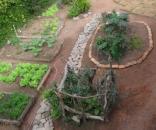 O prazer de colher verduras e legumes frescos e sadios quando o ser humano sente o poder da terra.